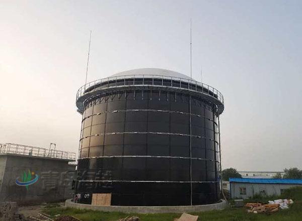 江苏泰州养猪场3000沼气拼装罐600立方双膜气柜项目